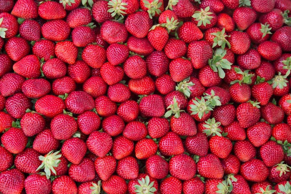 خوراکی های آب رسان بدن و پوست,توت فرنگی