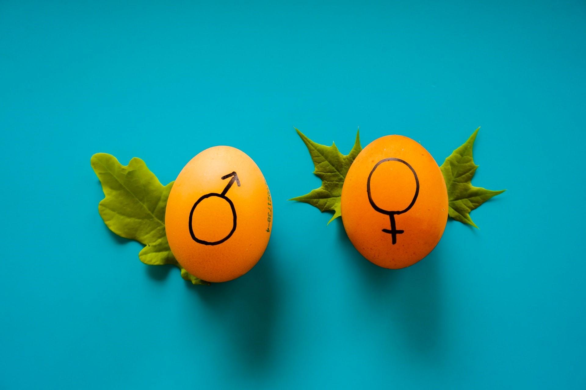 معرفی بهترین محصولات بهداشت جنسی